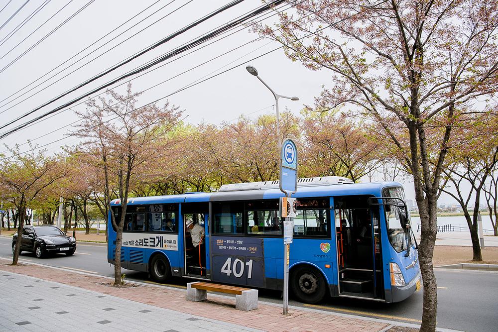 대구광역시의회 버스 광고_빅아이디어연구소