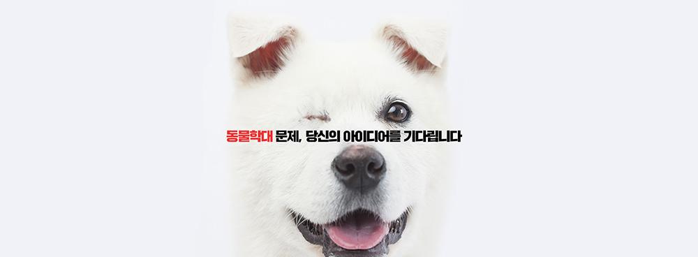 행정안전부 도전 한국 캠페인-동물학대문제 해결_빅아이디어연구소