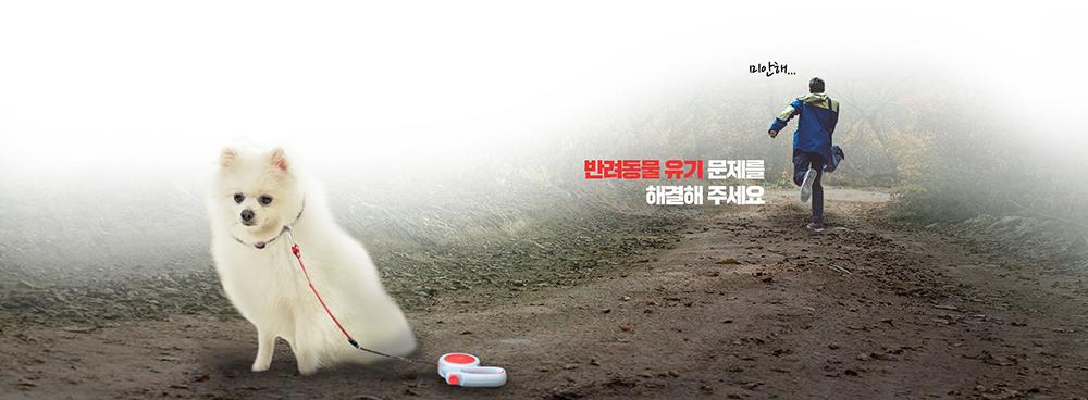 행정안전부 도전 한국 캠페인-동물-유기-해결_빅아이디어연구소